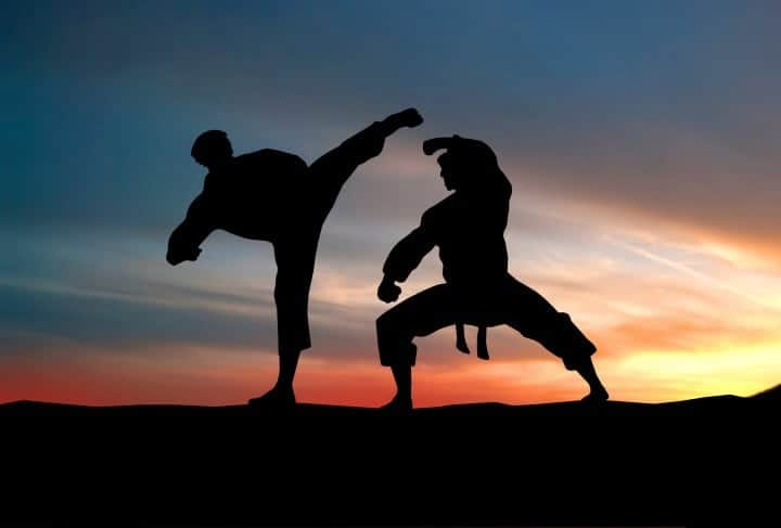 The first martial art to learn