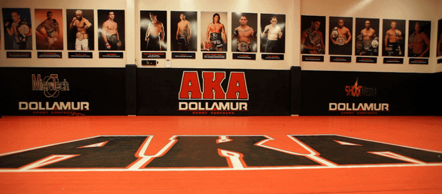 aka best mma gym in the world