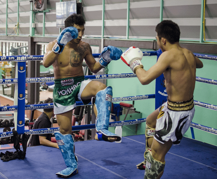 ultimate guide for Muay Thai and mma shin guards