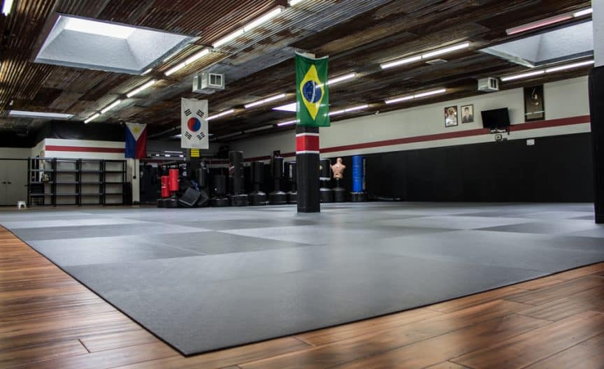 how much should mma gyms cost