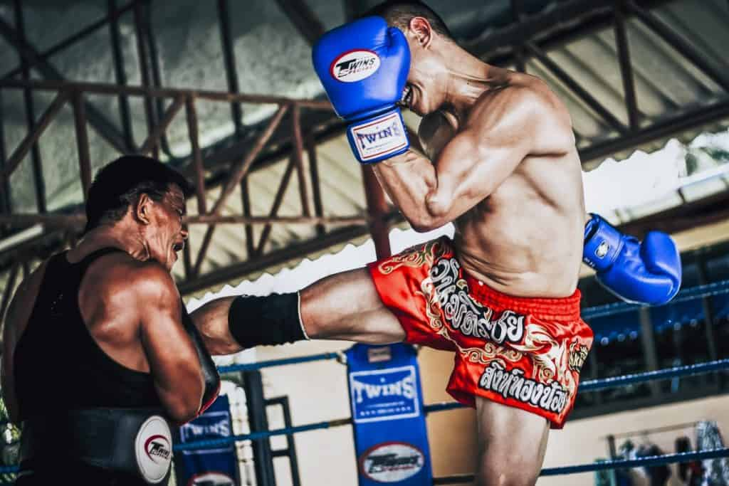 Muay Thai - Thai Boxing Gloves