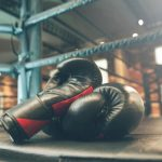 how much do boxing gloves cost