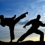 Why should you study martial arts